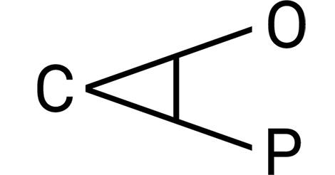 https://dovekwasten.nl/wp-content/uploads/2019/09/caop_logo.jpg